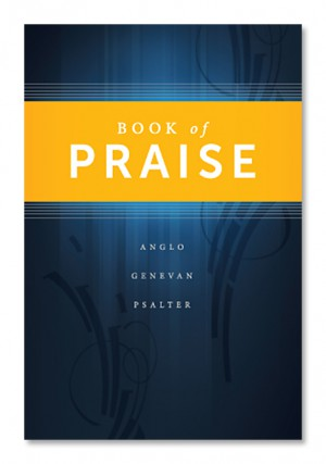 Book of Praise 2014 Standard Edition - Blue