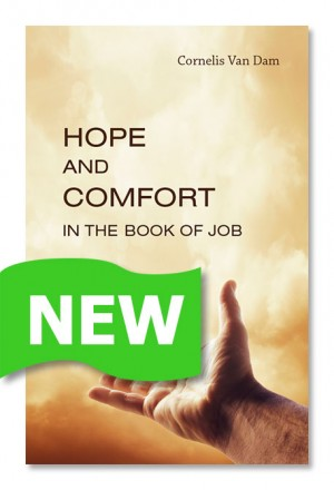 Hope and Comfort In the book of job